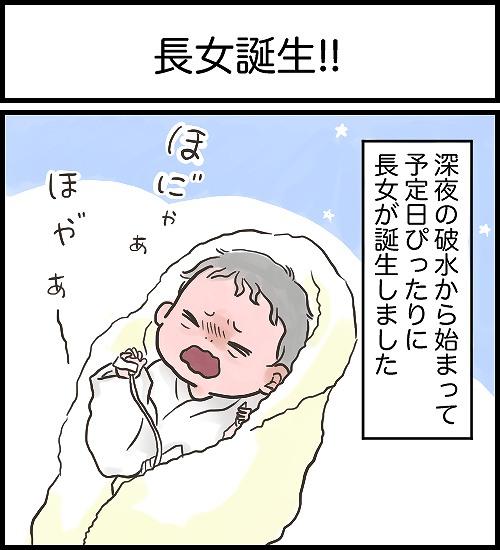 【うめまる日ろく~子育て4コママンガ~】「長女誕生」